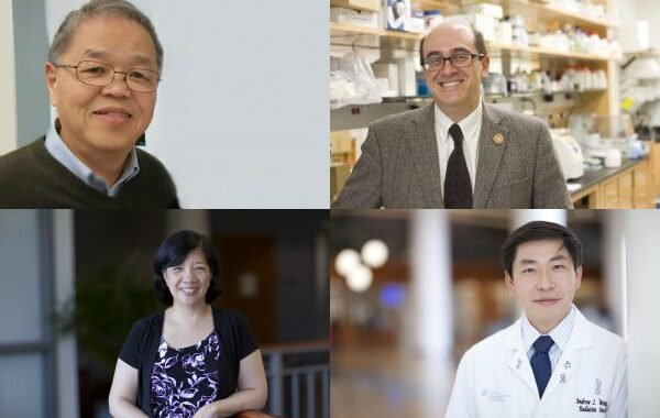 Researchers study strategies for using nanotechnology to boost cancer therapeutics