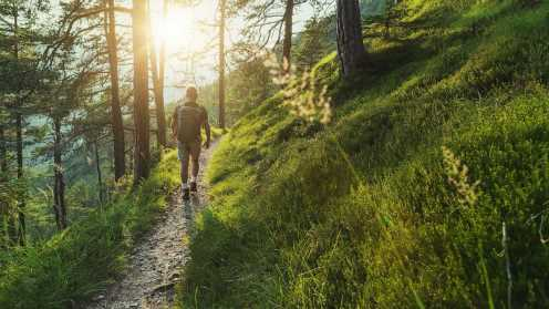 Does spending time outdoors improve your health?