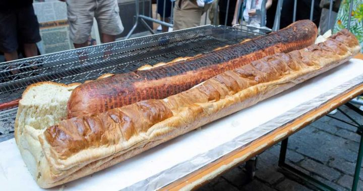 The Sight Of This Massive 66-Pound Hot Dog Will Make You Squirm