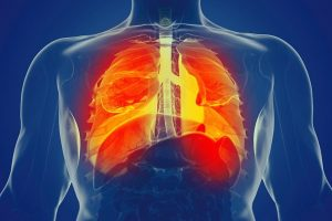 Mechanical forces impact immune response in the lungs