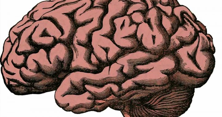 Study identifies brain networks that play crucial role in suicide risk