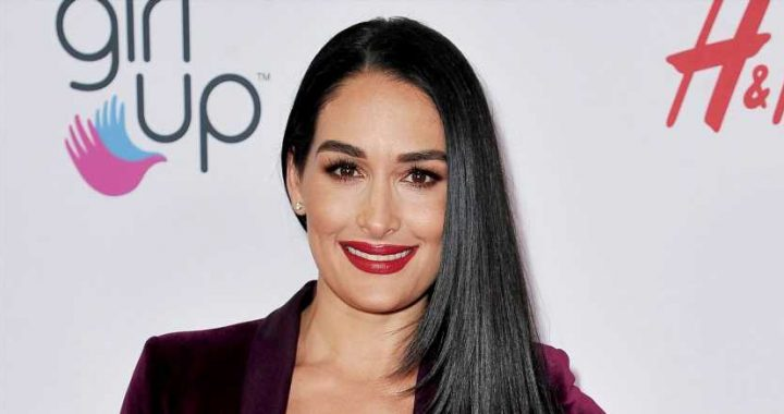 Nikki Bella Shows Abs in Topless Baby Bump Shot, Shares Pregnancy Symptoms