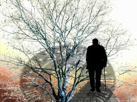 New evidence for a blood-based biomarker for Alzheimer's disease