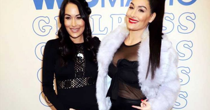Pregnant Nikki and Brie Bella Show Off Their Twinning Baby Bumps in Naked Maternity Photo Shoot