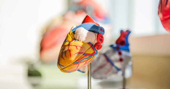 Does COVID really affect your heart?