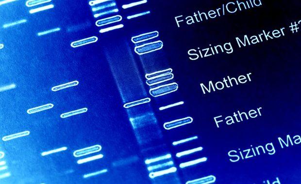 Genetic variants in a neuro-associated gene cause neurodevelopmental disorder, finds study